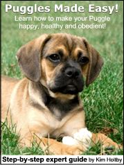 Puggles Made Easy
