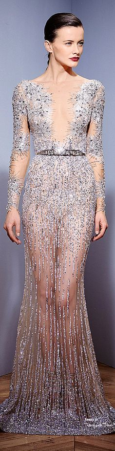 Zuhair Murad ~ Highly Embellished Long Sleeve Sheer Fall Gown,  2015, Silver/Nude