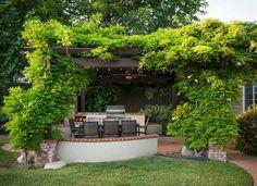 climbing plants White Pergola, Wood Pergola, Pergola Garden, Lawn And Garden, Garden Beds, Diy Pergola, Pergola Kits, Backyard Landscaping, Pergola Ideas For Patio