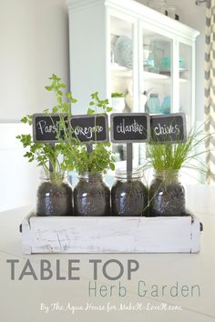 Table Top Herb Garden...from an old pallet!