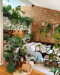 Since Bohemian home decor ideas is more often than not at the center of an inviting and agreeable home, the interior style must be perfect. Home is the place… Room With Plants, House Plants Decor, Plant Decor, Big Plants, Plant Aesthetic, Aesthetic Room Decor, Indoor Garden, Indoor Plants, Home And Garden