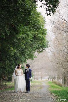 春を感じる祇園と菜の花と帰帆島*ロケーション前撮り   *elle pupa blog*