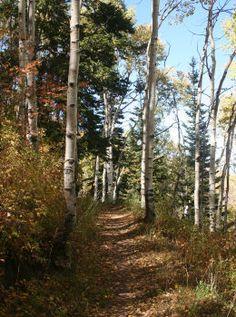 Spiro Trail in Park City