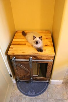 Cat Litter Box Ideas Hidden Discover Rustic Cat Litter Box Storage - Sliding barn doors / Custom Cat Home / Kitty House / Litter Storage / Unique / Rustic Pet / Pet furniture Hiding Cat Litter Box, Cat Room, Pet Furniture, Rustic Cat Furniture, Furniture Companies, Furniture Stores, Furniture Ideas, Little Boxes, Storage Boxes