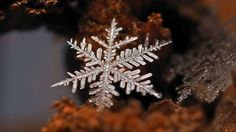 Macro image of a snowflake. #deepcor #snowflake #photography #science #winter #nature