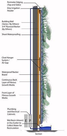Ideas for garden vertical wall architecture de - Jardin Vertical Fachada Vertical Green Wall, Vertical Garden Design, Vertical Bar, Green Architecture, Architecture Design, Agriculture Verticale, Vertical Farming, Vertical Gardens, Green Facade