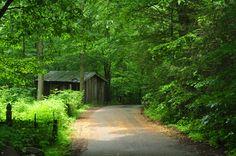 The Roarking Fork Motor Nature Trail in Gatlinburg, TN