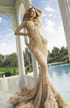Lebanese designer  GORGEOUS  DEFINITELY FIRST DRESS ON MY LIST. IT HAS ATTACHED LITTLE SWAROVSKI CRYSTALS.   COST PROBABLY MORE THAN THE MOST EXPENSIVE CAR IN THE WORLD.