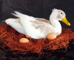 227,67 € Needle Felted momma Duck Made to Order