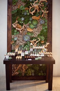 Succulent wall succulents, grapewood, moss, air plants and fungi caps-- Would make a gorgeous ceremony backdrop // obsessed Succulents In Containers, Cacti And Succulents, Planting Succulents, Succulent Planters, Cactus Plants, Succulent Display, Succulent Wall Art, Aquarium Mural, Suculentas Interior