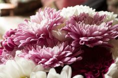 Ροζ Λουλούδια, Ροζ Πέταλα, Ροζ
