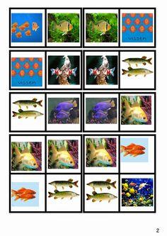 """МОЯ ПЕСОЧНИЦА: Тема """"Рыбы. Морские животные"""""""