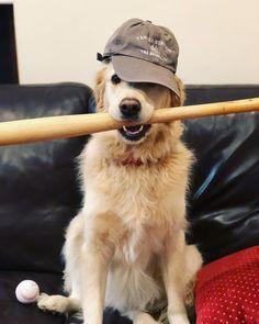 I'm ready to play!