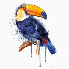 Toucan Watercolor painting Wildlife Wall art by Artsyndrome Watercolor Bird, Watercolor Animals, Watercolor Paintings, Tattoo Watercolor, Tableau Pop Art, Wildlife Decor, Guache, Ink Drawings, Community Art