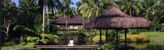 The Farm at San Benito, Batangas is located 2hrs south of Manila. This multi-award winning 48-hectare resort offers an exceptional healing environment to rejuvenate the mind, restore the body and awaken the spirit.