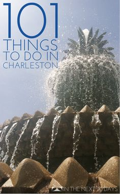 101 Things to do in Charleston, SC | In The Next 30 Days