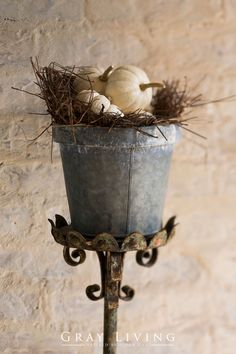 Remove your candlesticks and replace with zinc bucket, pine needles and your favorite mini pumpkins! What a great fall touch! Decoration Christmas, Thanksgiving Decorations, Thanksgiving Games, White Pumpkins, Small Pumpkins, Mini Pumpkins, Decoration Bedroom, Autumn Decorating, Fall Harvest