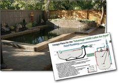 Koi pond design koi fish stock tank pinterest koi for Koi pond designs south africa