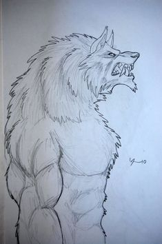How to Draw a Wolf Head, Werewolf Head, Pencil Work, Step by Step ...