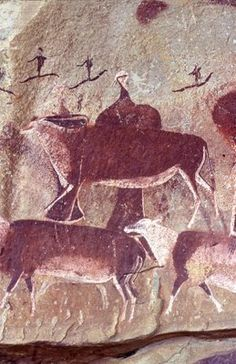 Bushman rock art in the caves of Africa. Art Pariétal, Paleolithic Art, Zoo 2, Cave Drawings, Art Ancien, Art Premier, Tempera, Aboriginal Art, Ancient Artifacts