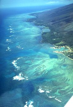 Coral reefs of Molokai, Hawaii. My favorite vacation spot in the world!