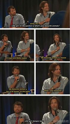 Supernatural fans, I'm right there with that little girl! LOVE BATS :)