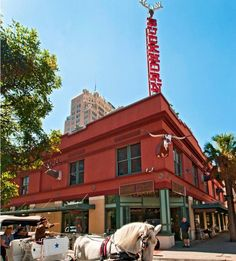 Buckhorn Museum and Texas Ranger Museum:    The Buckhorn Saloon and Museum started with the private collection of Albert Friedrich in 1881. It is privately managed and located in the center of downtown San Antonio just a few blocks away from the Riverwalk and Alamo. It showcases an exhibit of more than 520 species of wildlife.