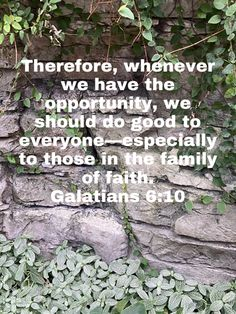 Galatians 6 10, Good Scriptures, Love Your Neighbour, Broken Marriage, New Living Translation, Grow Together, What Is Love, Live For Yourself, Life Is Good