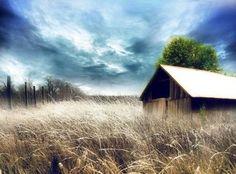 Image result for serene pics