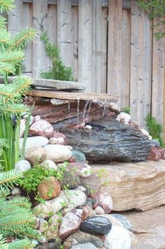 pond with great stone work