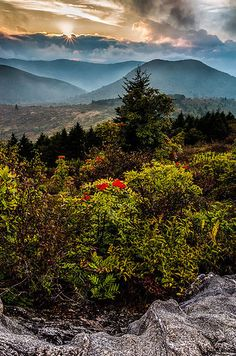 14 Underrated Places You'll Really Want To Move To - Asheville, North Carolina in the Blue Ridge Mountains