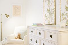 Poplin & Queen Interiors