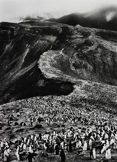 Deception Island, Antarctica. Photo by Sebastiao Salgado. 2005. follow http://pinterest.com/ahaishopping/