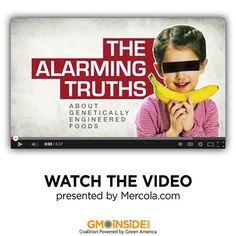 "If you haven't seen this video, produced by Dr. Joseph Mercola, we highly recommend spending 5 minutes and watching "" the alarming truths about GMOs."" http://youtu.be/_FkY8tKS1uo"