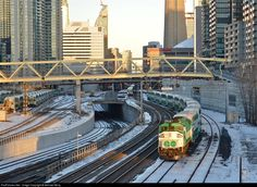 Net Photo: GOT 559 GO Transit (Greater Toronto Transit Authority) EMD at Toronto, Ontario, Canada by Michael Berry Go Transit, One Night Stands, First Night, Buses, Ontario, Trains, Berry, Toronto, Fair Grounds