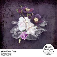 DitaB Designs:   ONE FINE DAY individual packs 30% OFFcollections...