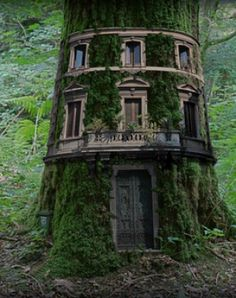The most beautiful tree houses from around the world.boredpan… The most beautiful tree houses from around the world.or… Fairy Tree Houses, Fairy Garden Houses, Gnome Garden, Garden Art, Garden Design, Fairy Doors On Trees, Fairy Village, Garden Table, Garden Ideas