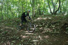 ALBFELS-TRAILS - Mountainbike-Kurse / Mountainbike-Schule Schurwald / Stuttgart / Esslingen / Waiblingen / Alb
