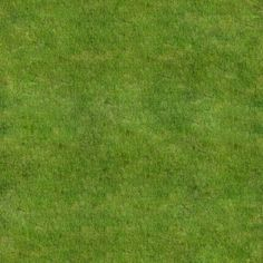 Awesome Natural Examples of Grass Textures