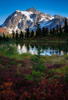 Mount Shuksan in Washington state's North Cascades National Park reflecting in Picture Lake at Autumn by Inge Johnsson