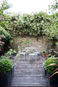Courtyard garden ideas