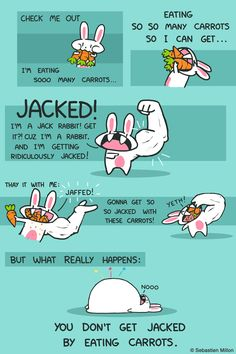Bunny's Getting Jacked - Sebastien Millon / Art & Illustration