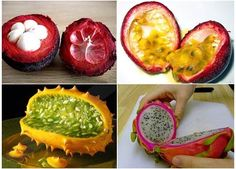 10 Must-Try Exotic Fruits