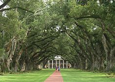 Oak Alley Plantation - Wikipedia, the free encyclopedia
