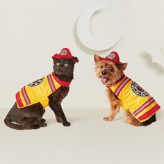 176bc12467e70 Halloween Fire Fighter Dog Costume - Yellow - Hyde and Eek!