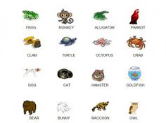 A game that teaches animal recognition.  Great for toddlers and preschoolers!
