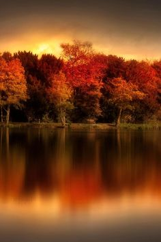 Autumn fire The post Autumn fire autumn scenery appeared first on Trendy. Autumn Scenery, Autumn Trees, Autumn Lake, Autumn Nature, Beautiful World, Beautiful Places, Beautiful Pictures, Fall Pictures, Belle Photo