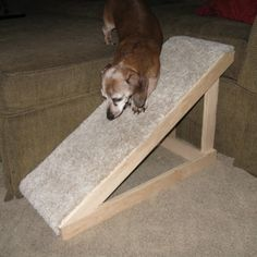 DIY PET RAMP - free plans, build from scraps you probably have laying around the house.
