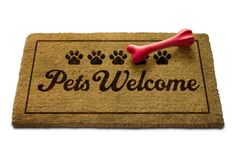 Pet-proof your home to guarantee the safety of your pet and your furniture! Pet-proof furniture, window screens, and a dog fence. Dog Friendly Hotels, Pet Friendly Accommodation, Pet Shop, Pet Friendly Holidays, Orlando Resorts, Pet Travel, Travel Tips, Las Vegas Hotels, Pet Health