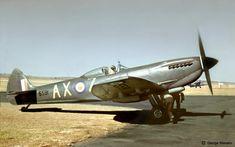 Ww2 Aircraft, Fighter Aircraft, Fighter Jets, Military Jets, Military Aircraft, South African Air Force, The Spitfires, Supermarine Spitfire, Korean War